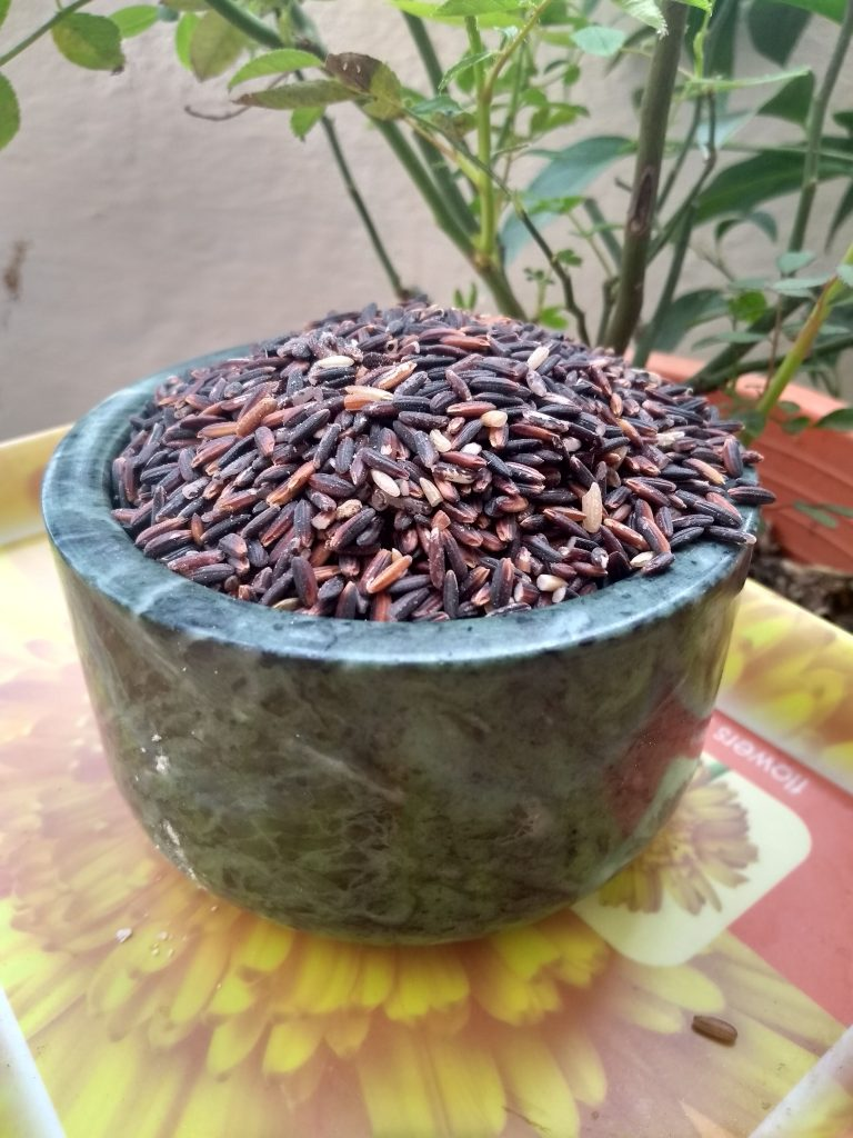 Black Rice – A quick look at  Black Rice benefits, Cooking And More